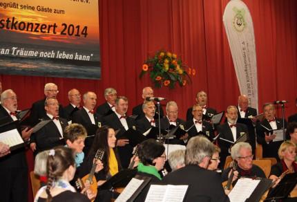 """Das Herbstkonzert 2014 stand unter dem Motto """"Solang man Träume noch leben kann"""" und war ein voller Erfolg."""