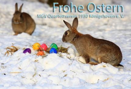Der MGV Quartettverein 1930 Königshoven e. V. wünscht frohe Ostern!