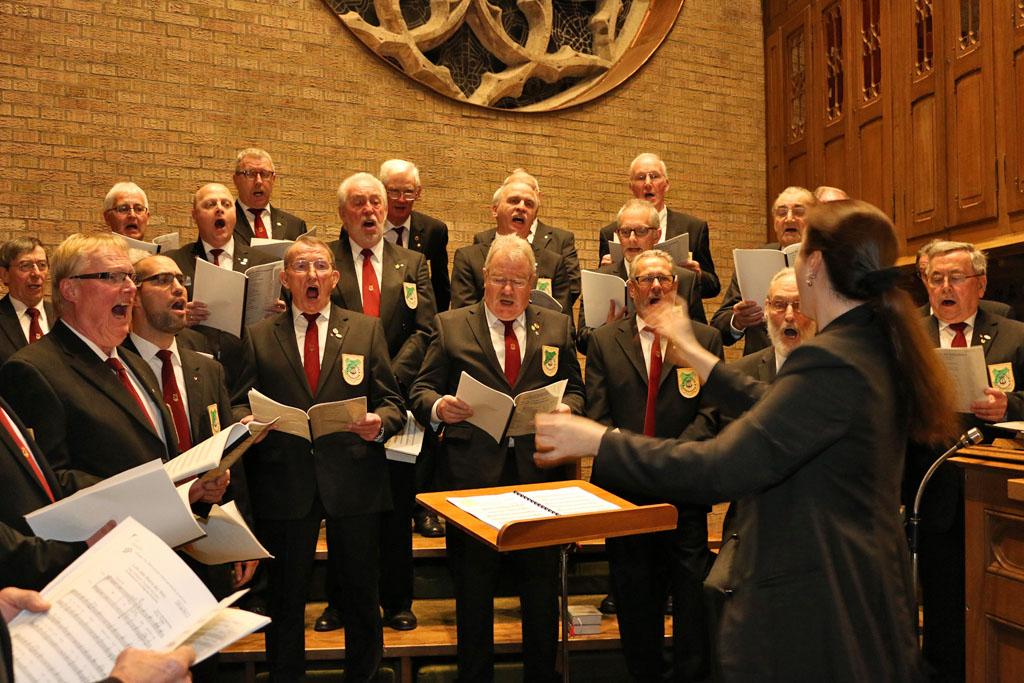 Auch die Bässe hatten echt Freude während der Liedbeiträge.