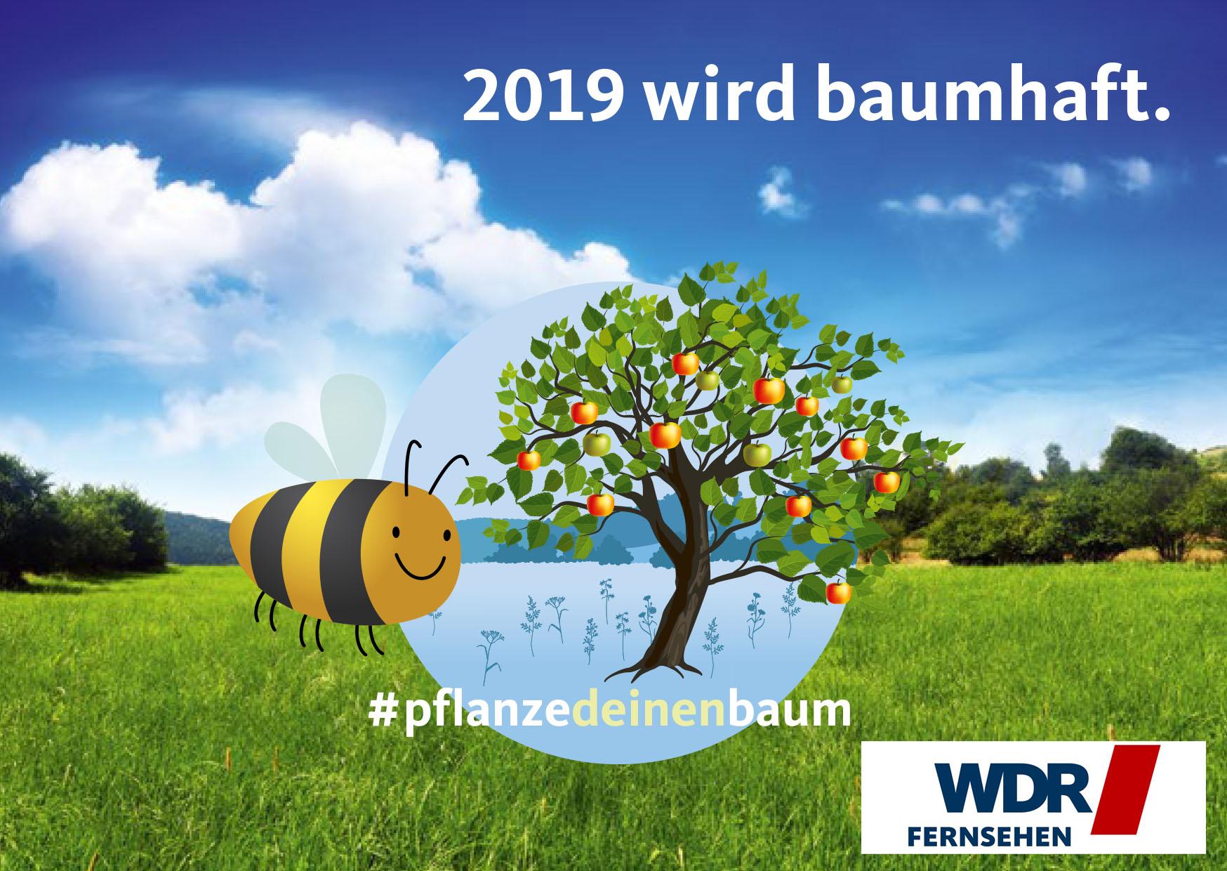 """Als Gewinner des WDR Fernsehmagazins """"hier und heute"""" freut sich der Königshovener Quartettverein über seinen Apfelbaum """"Kaiser Wilhelm"""" für die Stadt Bedburg. (Collage: WDR)"""